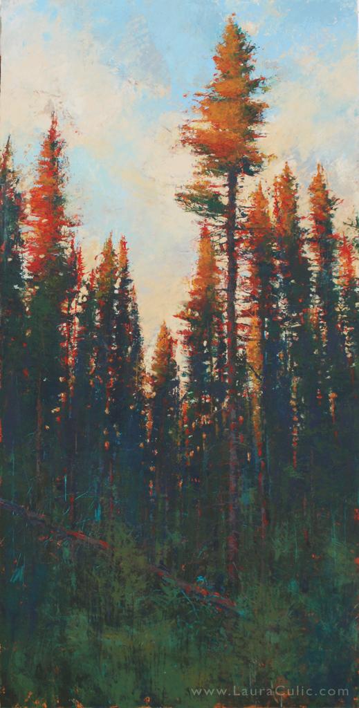 foresthomeno4_60x30