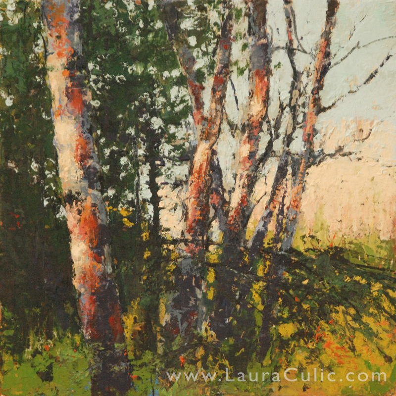 summerbirches_12x12